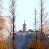 Jigsaw: Buddhist Temple