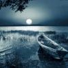 Romantic evening. 5 Differences