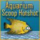 Aquarium Scoop Hotshot