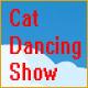 Cat Dancing Show