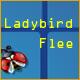 Ladybird Flee