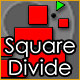 Square Divide